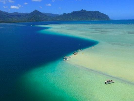 Coconut Island Oahu Tour