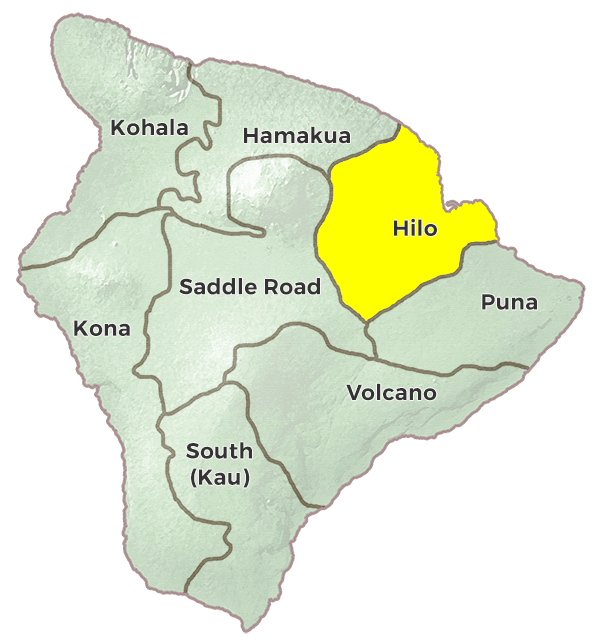 Hilo Hawaii Region Image