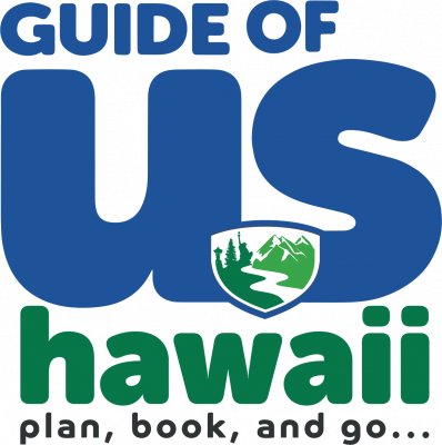 Hawaii Business Services Image