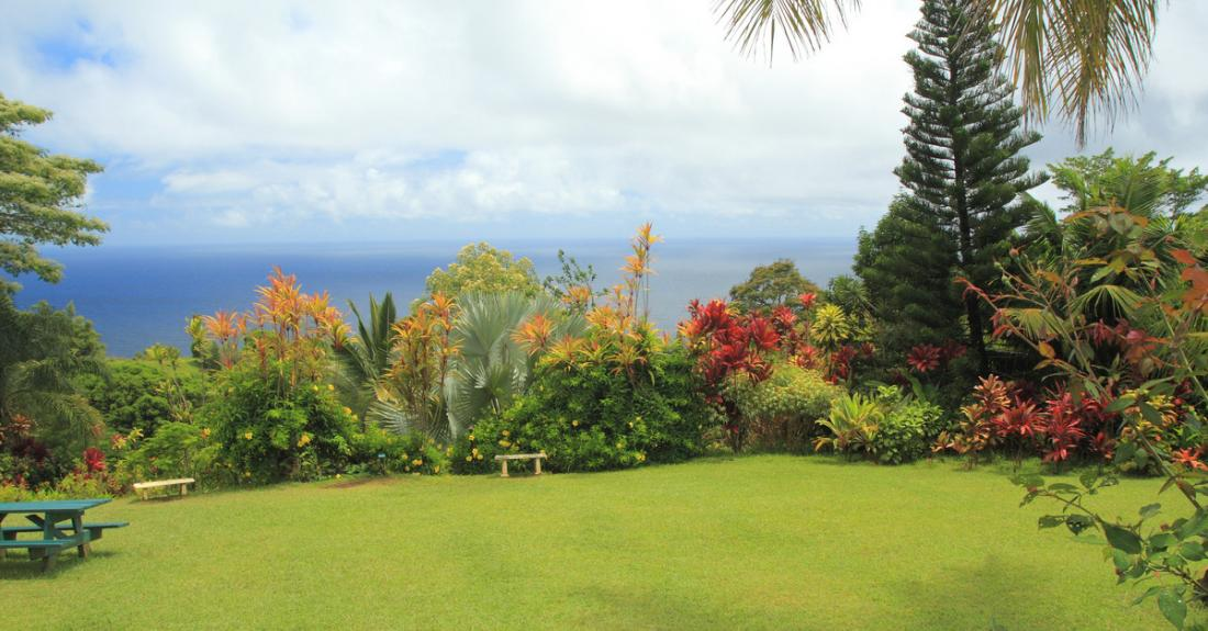 Relax and enjoy the beautiful view from the Garden of Eden Botanical Arboretum