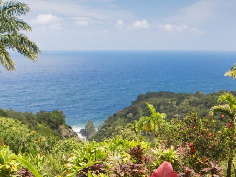 Garden Of Eden Botanical Arboretum Maui Hawaii