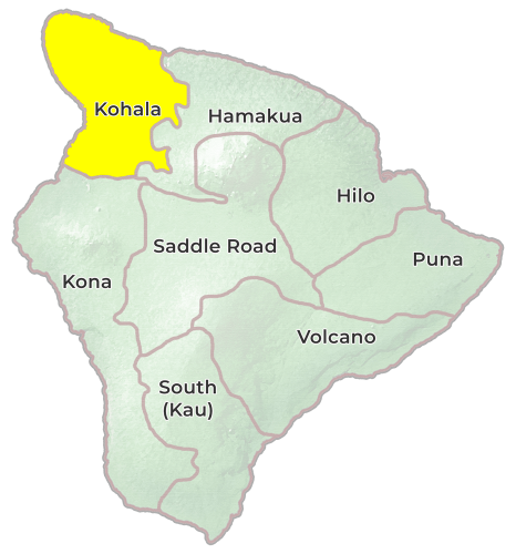 Big Island of Hawaii Kohala Region Map