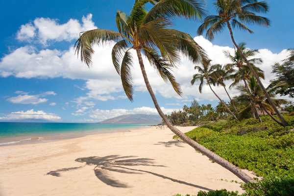 Top 5 Things to Do in Kihei Image