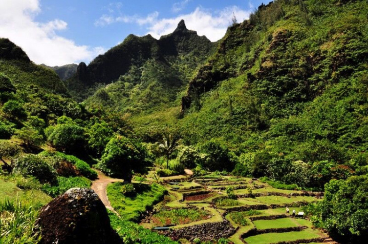 Best Kauai Vacation Activities Image