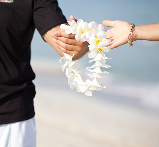 Hawaiian Wedding Traditions Image