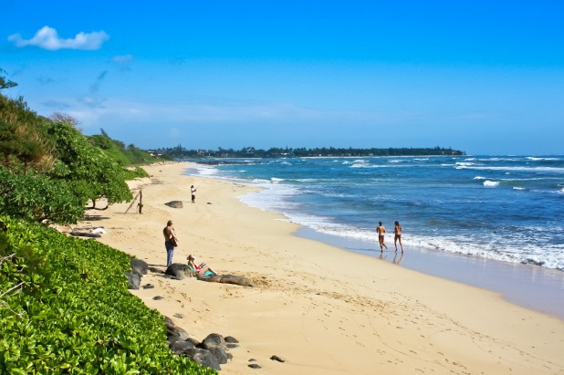 Best Kauai Beach Wedding Locations Image