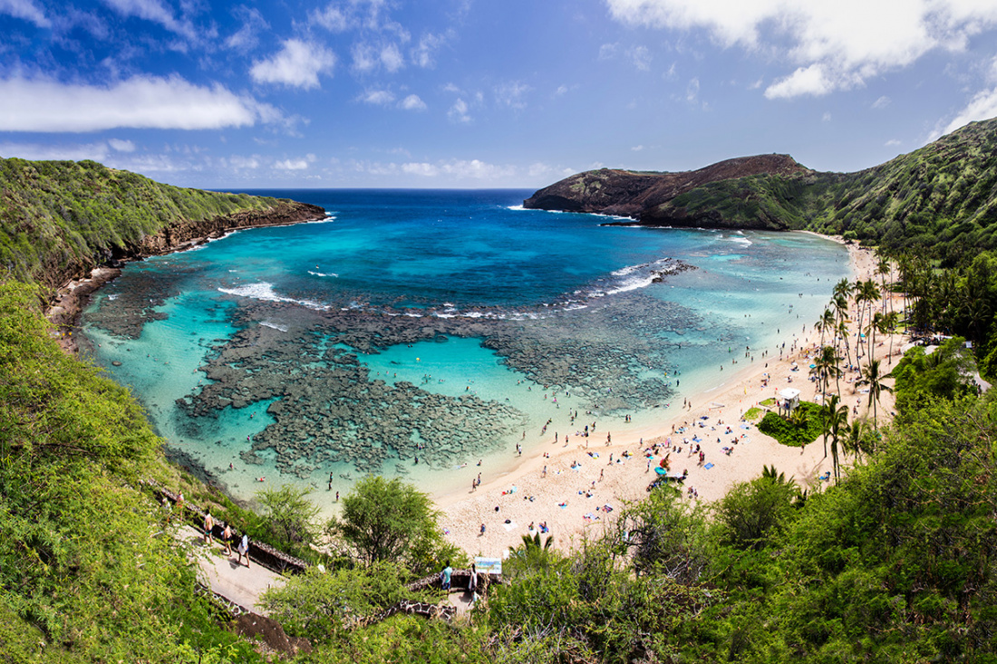 Best Snorkeling Locations in Oahu Image