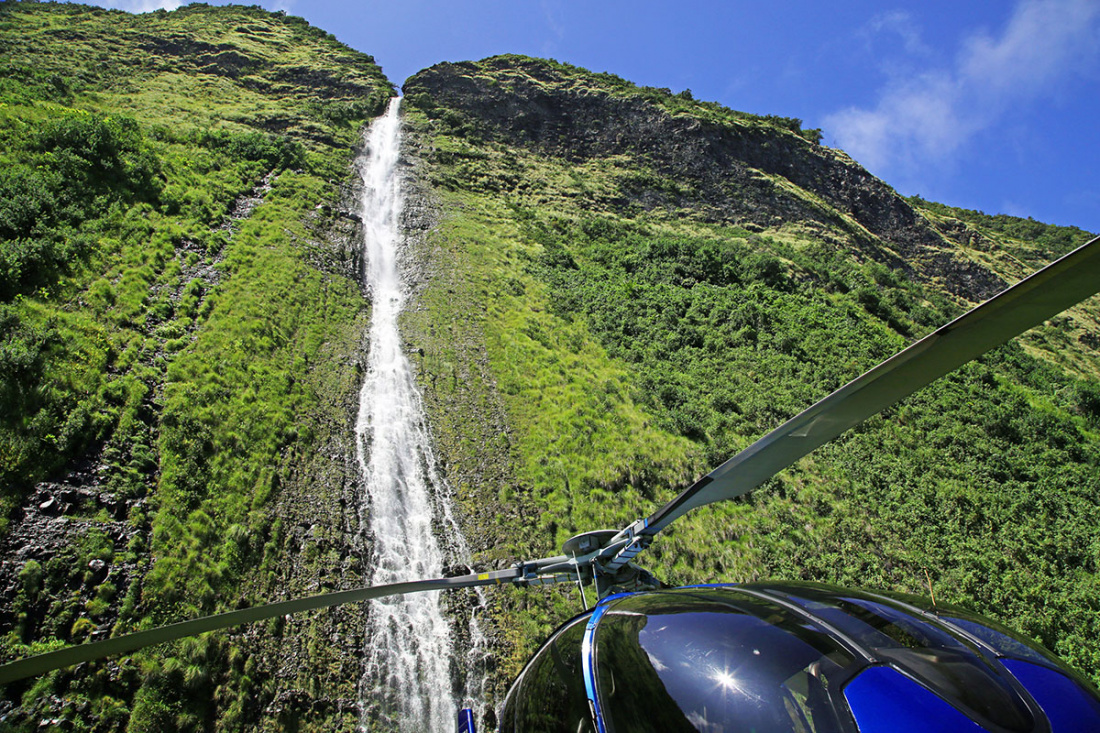Hawaii Tours & Activities Image