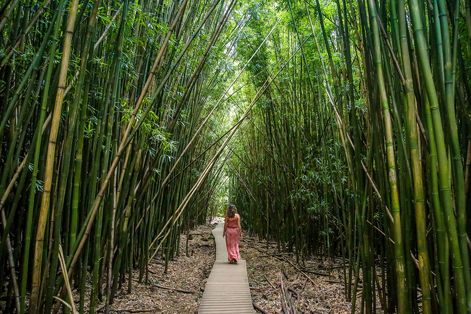 Top Things to Do on Maui Image