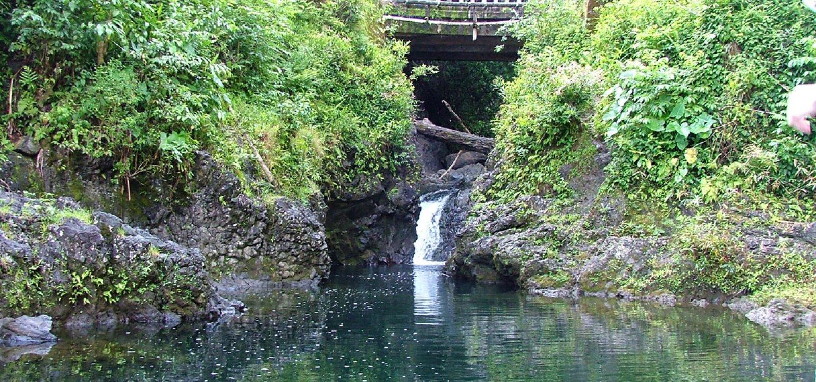 Ching S Pond Blue Sapphire Pools Maui Hawaii