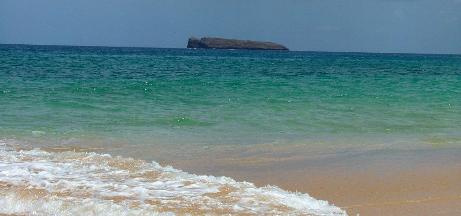 Nude Fat Beach
