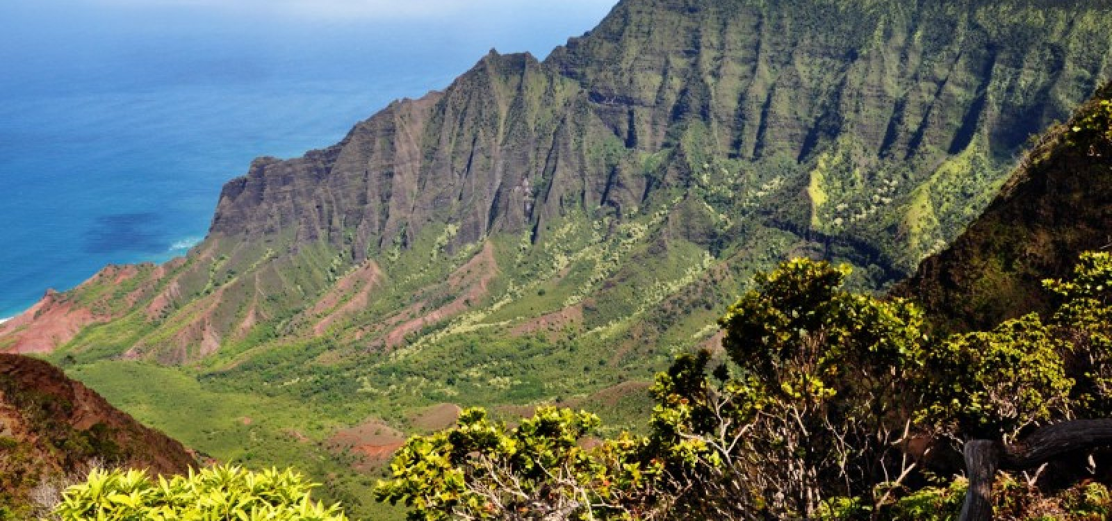 Kalalau_lookout on Division Page