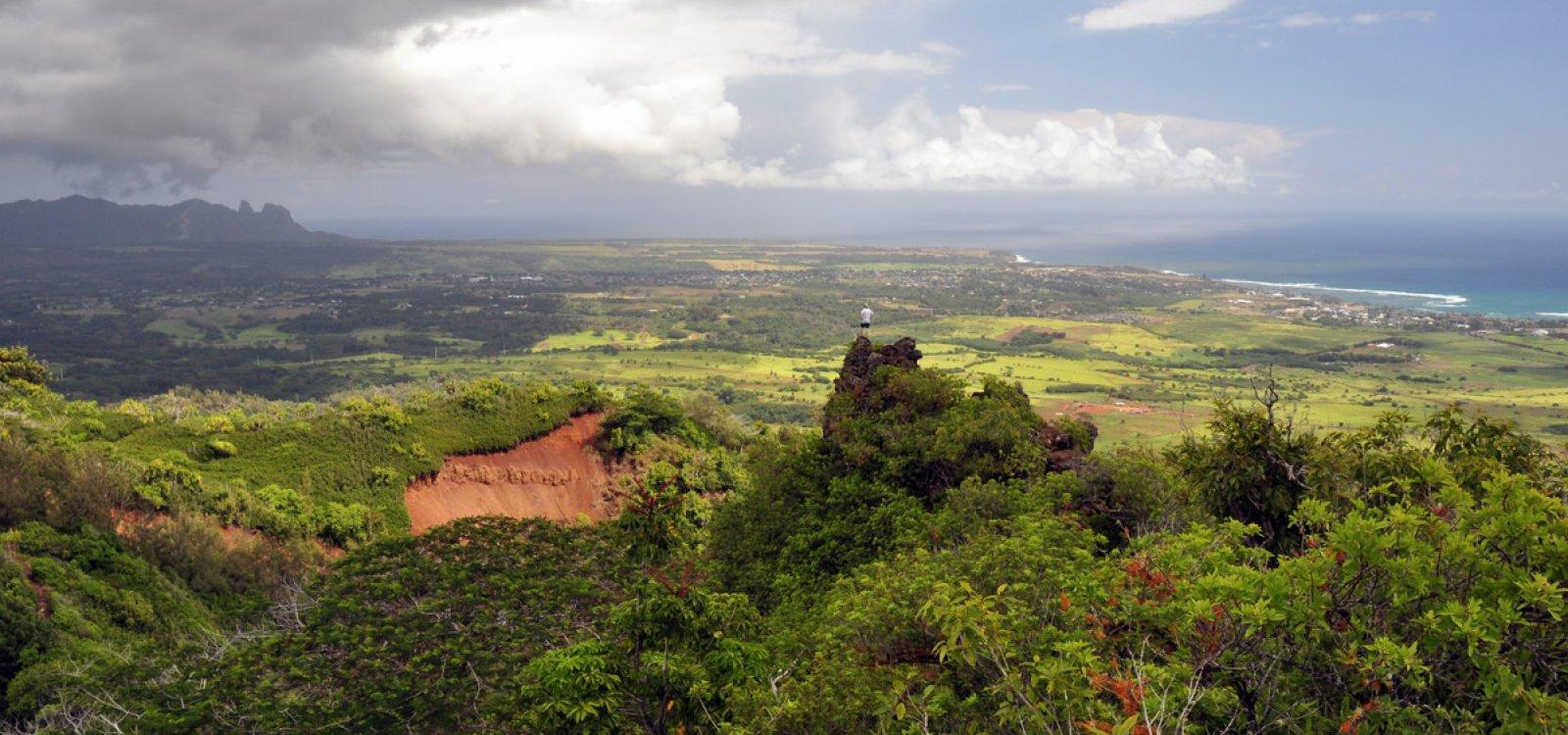 Sleeping Giant Nounou East Trail Kauai Hawaii