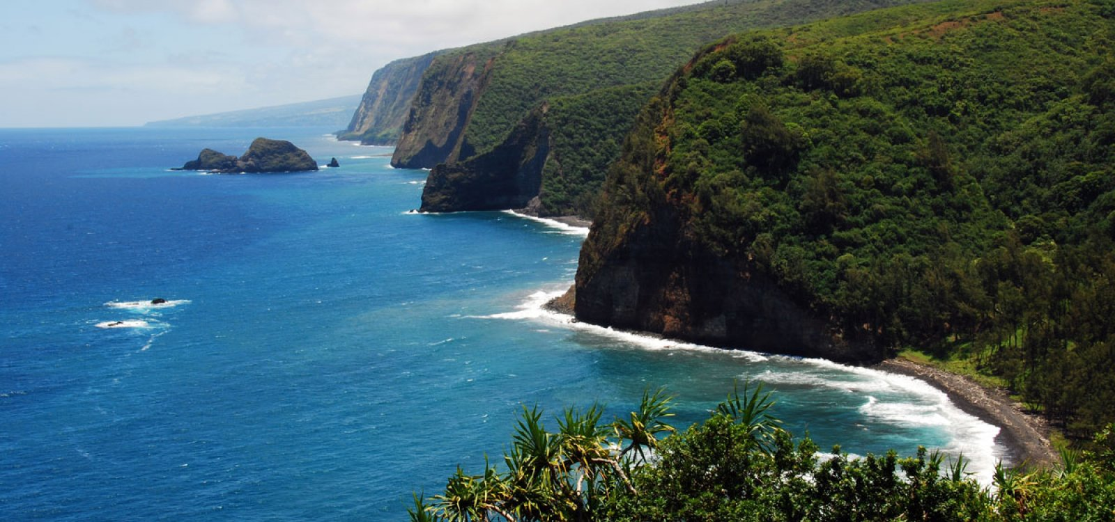 Best Tours Of The Big Island
