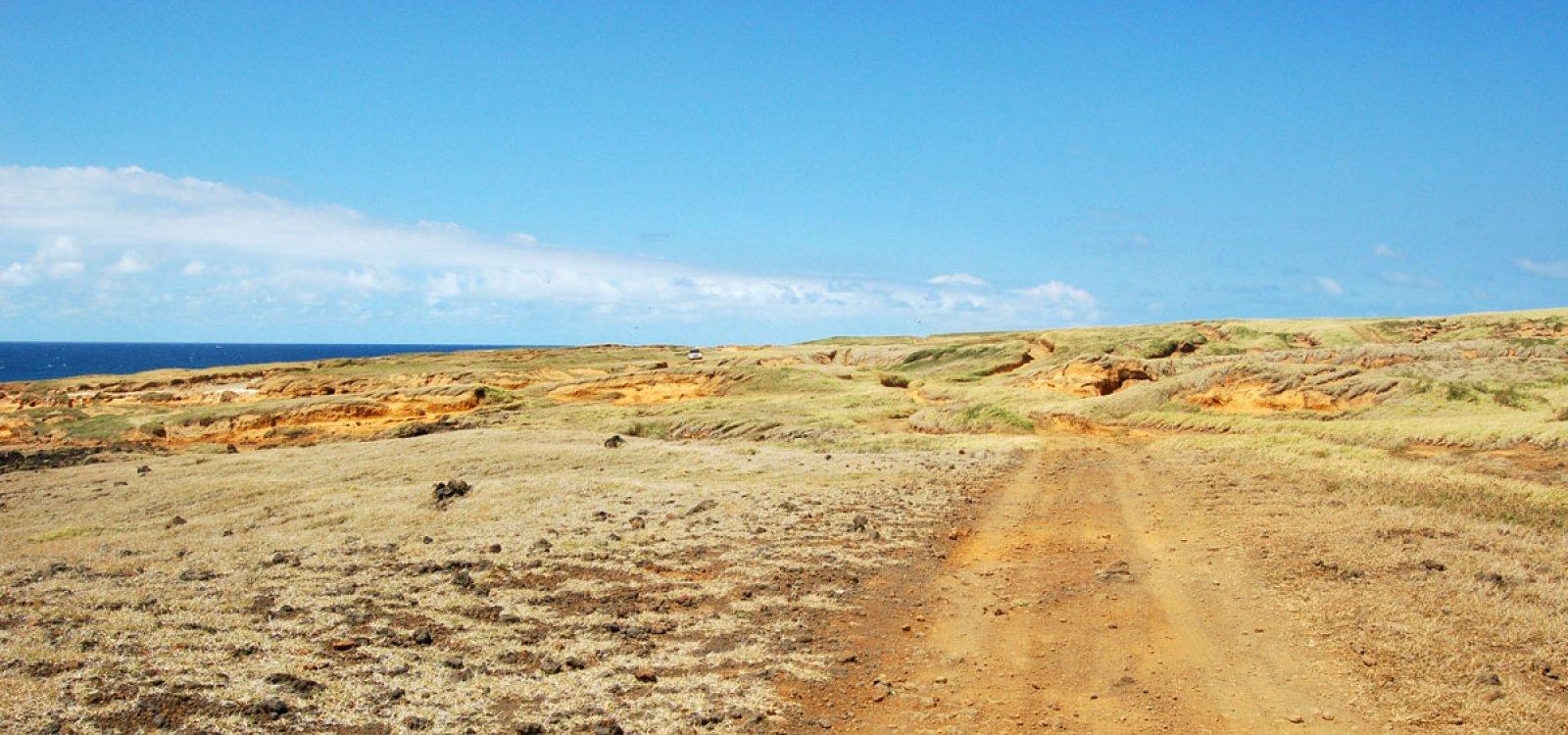 Green Sand Beach Big Island Tours