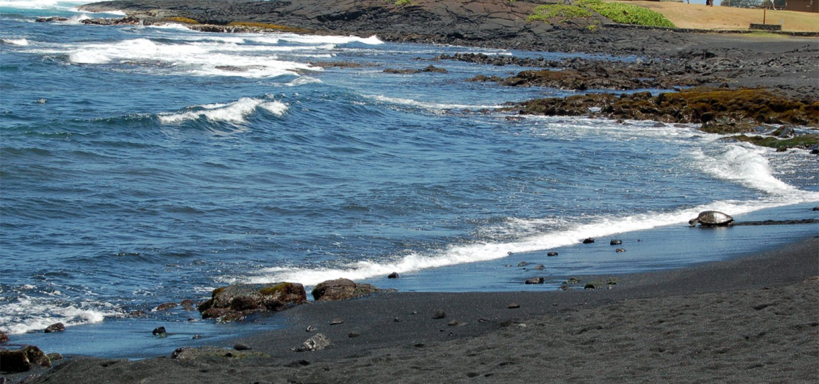 100 beaches with black sand tidal pools and black sand beac