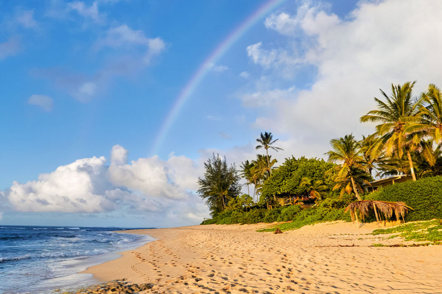 North Shore Oahu Beaches Guide Image