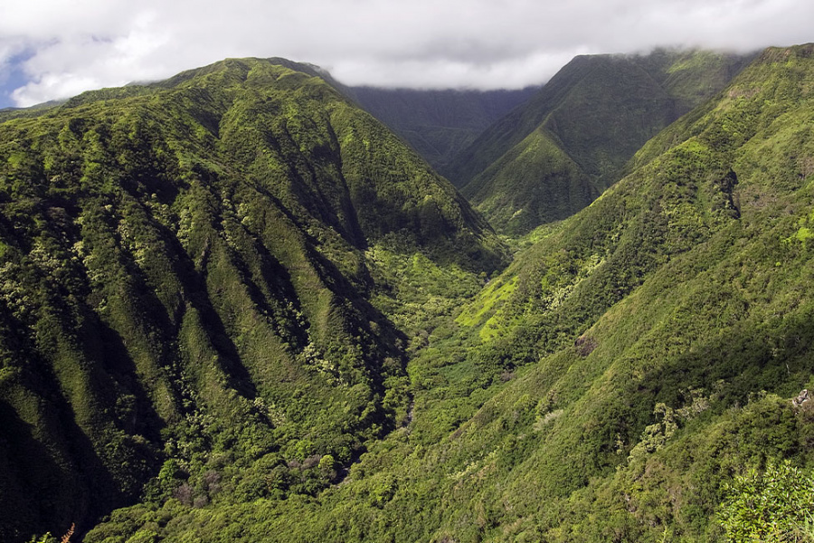 West Maui Hiking Trails Guide Image