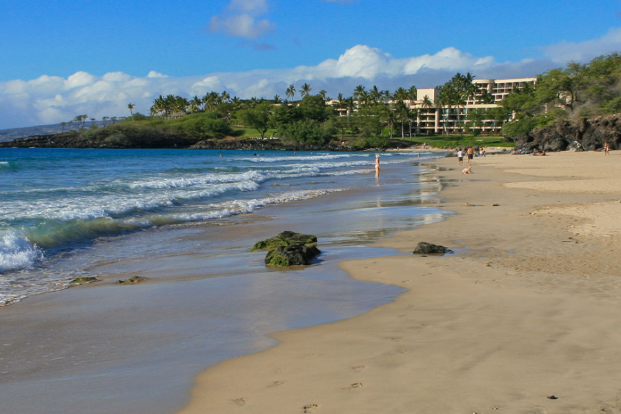 Kohala Big Island Beaches Guide Image