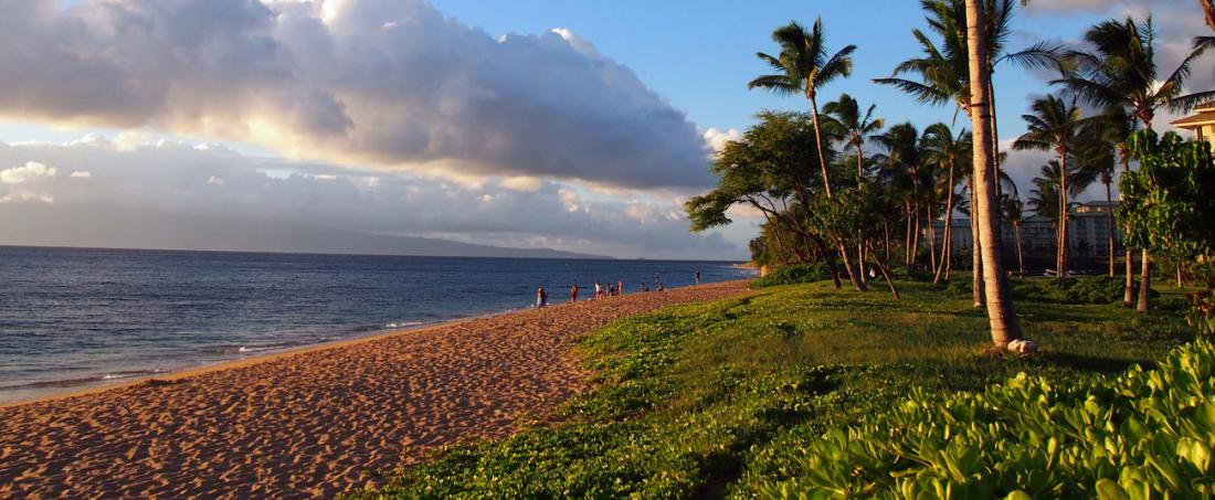If you only take one photo of a beach while you are visiting Maui, may it be this one.
