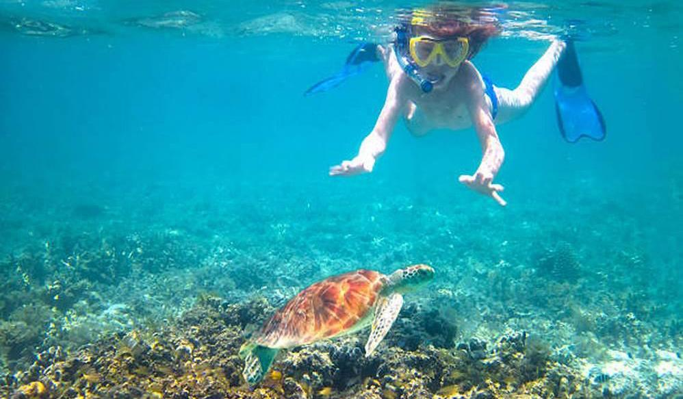 Hawaii is a great place for the kids to snorkel and explore
