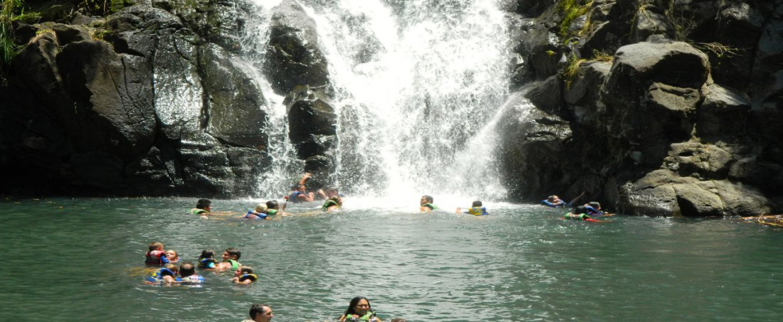 Enjoy an afternoon swimming in the Waimea Falls