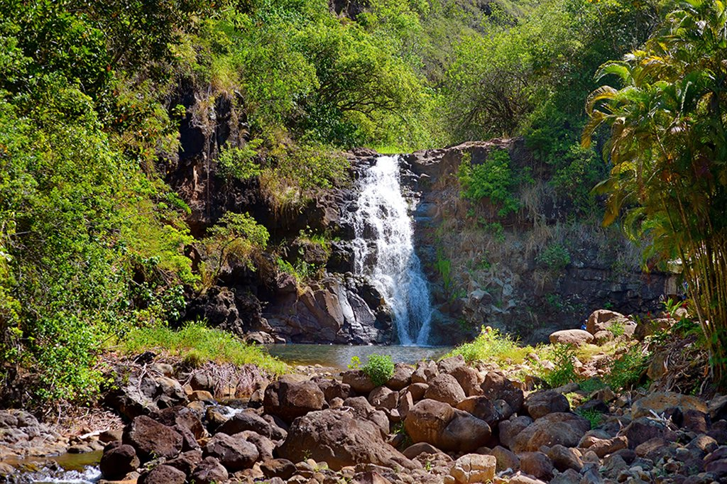 Waimea Falls, located in Waimea Valley on Oahu, is a perfect photo opportunity.