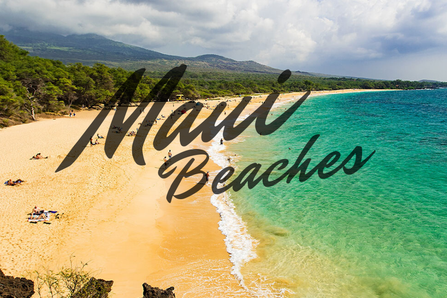 Maui Beaches Image